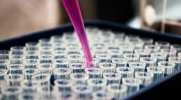 White House launches a joint committee to improve research productivity