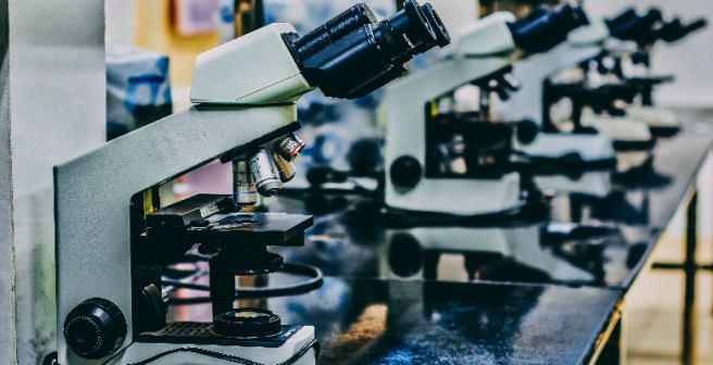 2014 Nobel Prize in Chemistry awarded for innovation in fluorescence microscopy