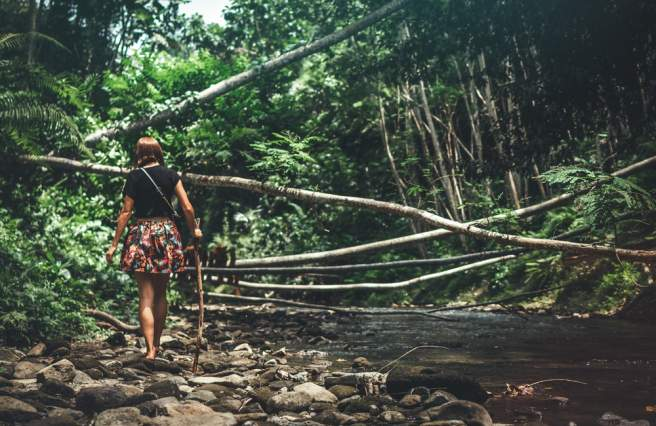 A totally expected journey to becoming an ecologist