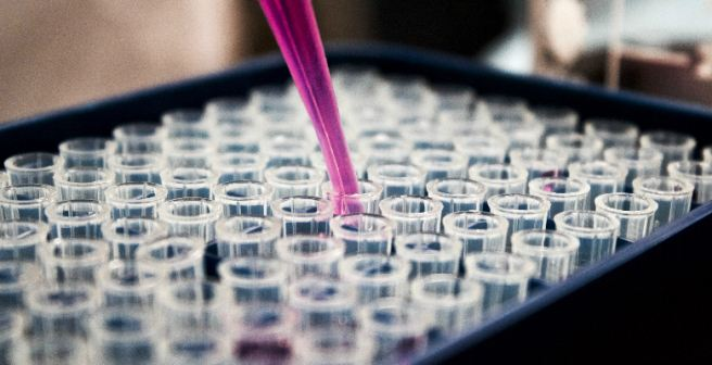 Geneticists to discuss the future of human genome editing in an international summit
