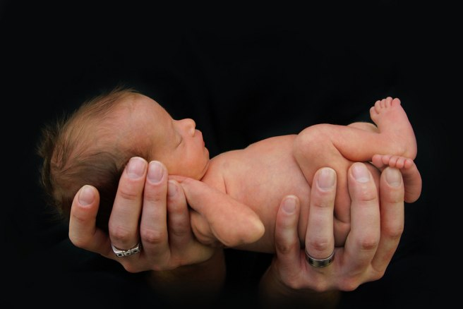 Hope for premature babies as researchers create artificial womb