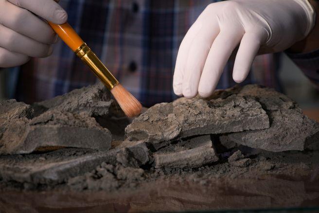 Wat is Carbon dating en hoe wordt het gedaan