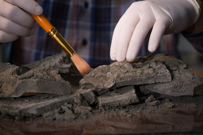 New carbon dating device capable of delivering on-site results