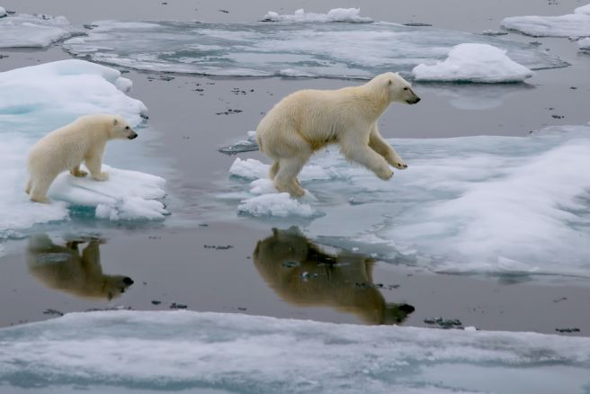 New study asserts climate change is not debatable