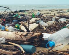 Earth's loaded with 8.3 billion metric tons of plastics